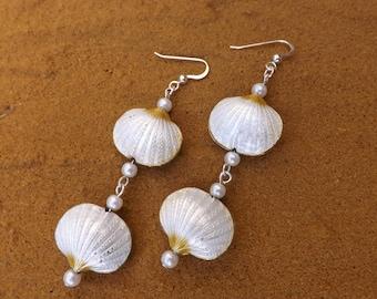 Cloisonné shell dangle earrings, sea theme, summer earrings
