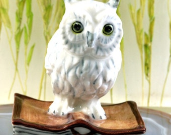Owl on the book - handpainted porcelain figurine - 2662
