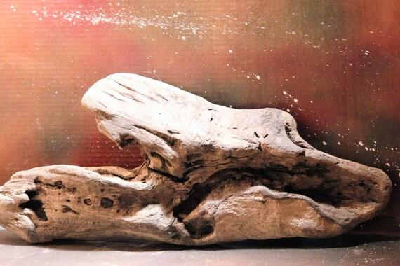Oak Driftwood Sculpture Solid Oak  Driftwood Trunk Root Bark Beach Art Sculpture Beach Room Decor Wall Hanging Wall Art Driftwood Decor