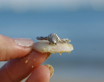 Twisted Shell Ring - Ocean Jewellery by Sophie Jade Jewellery
