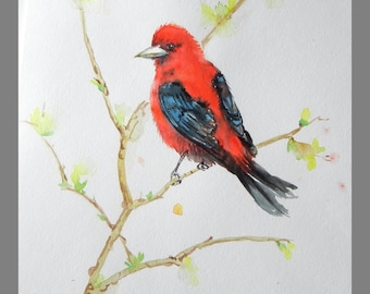 """Original water color Painting, Red Birds, 11""""x14"""", 160399,"""