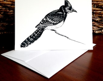 Bird Notecards, Blank Notecards, Notecards, Birds, Blue Jays, Gift for Bird Lovers, Simple Notecards