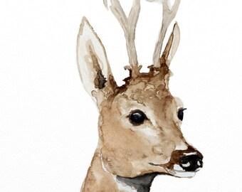 deer original watercolor painting deer painting woodland painting 28,2x21cm (11.24x8.4inch)