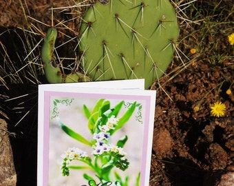 Happy Birthday! Purple Wildflower Handmade Card, Texas Desert Wildflower, Nature Photography, Custom 5 x7 Card w Kraft envelope & sticker
