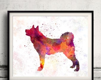 Karelian Bear Dog in watercolor 8x10 in. to 12x16 in. Fine Art Print Glicee Poster Decor Home Watercolor Illustration - SKU 1189