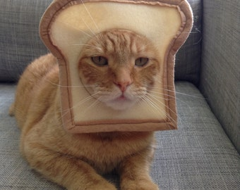 Bread your Cat Costume for Cats