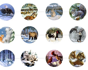 Asian animals 1 inch bottle cap images by thecarolinatrader Depot outlet bochum