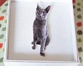 spike the kitten purrfect brooch