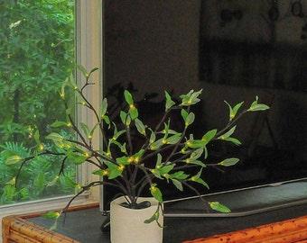 Wispy Green in Cream Matte Textured Vase Illuminated Floral Arrangement