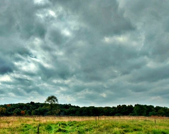 """Stormy Autumn Sky Photo, Fall Tree Line Landscape, Teal Wall Art, Stormy Sky, Autumn Photo, Gray Clouds, Midwest Landscape """"October Storm"""""""