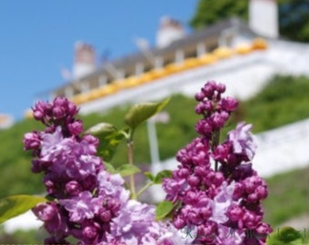 Lilacs in front of Fort Mackinac Canvas -- SAVE 10 & free shipping!!!