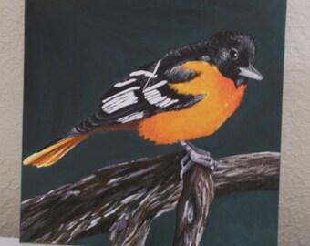 Little Orange Bird