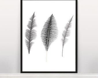 Black Feathers, Feather print, Wall art print, Wall art, Feathers poster print, Instant download, Affiche Scandinave, Scandinavian Art