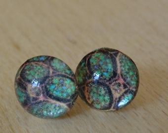 REDUCED - Algal cell stud earrings