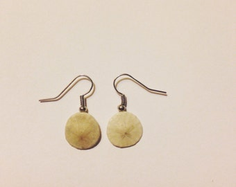 Mini Sand Dollar Earrings