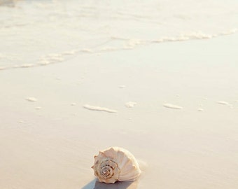 beach bathroom decor,  seashell art, seashell photograph, beach cottage decor, beach photography landscape, sunset, beach home decor