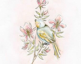 Bird Study Series Blue Bird Art Print Nursery Art Kids Decor