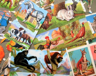 English Scrap, Paper Scrap, Crafting Supply, Farm Animals Scrap, Made in England, Wildlife Scrap,  Printed Paper, Paper Animals