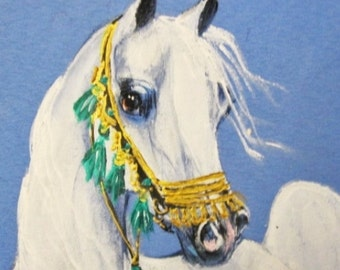 Arabian horse art tee shirt hand painted white arabian native  halter