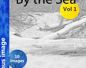 Adult Coloring Book, By the Sea -  Vol 1  gray scale coloring for artists of all ages