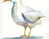 Original Watercolor -  Fred the Gull - A Bird of the Sea.