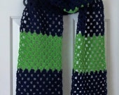 Hand Crocheted Seahawks  Inspired  Team Colors Scarf Extra Long