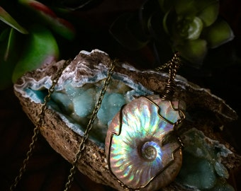 Sea Goddess Amulet- Opalized Ammonite