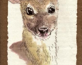 original illustration - fawn 2