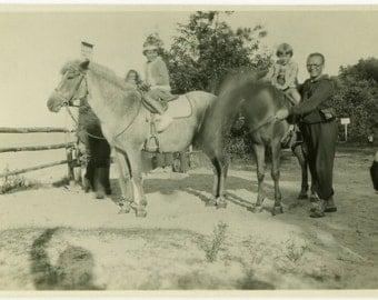 "Vintage Photo ""The Jittery Horse"" Motion Blur Odd Weird Head Snapshot Photo Old Antique Black & White Photograph Found Paper Ephemera - 168"