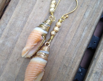 Real Seashell Earrings Long Conch Shell Natural  dangles with vermeil wires gold dipped