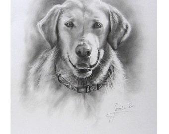 Custom Pet Portrait, Sketch Pet Portrait, Commission Portrait, Gift for Kid, 12x16 inches, Dog Cat Portrait, Portrait of Puppy, Order