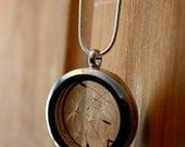On Sale-Enjoy 25% Off now Silver dandelion necklace, terrarium necklace, wish necklace