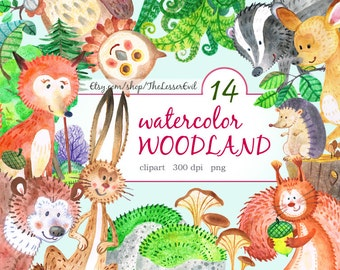 Woodland Creatures Clipart Set of 14, Hand Drawn Animals, Digital Watercolor Illustration, Clip Art, Stock Illustration, Commercial use
