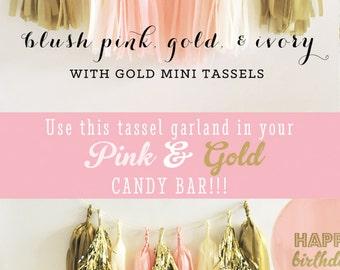 Gold and Pink Garland Pink and Gold Garland Pink Garland Pink Party Banner Pink Party Decor Pink and Gold Banner DIY Tassel KIT (EB3086)