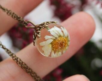 Real daisy necklace Resin daisy jewelry Dry flower necklace Pressed flower jewelry Floral necklace Terrarium necklace Pressed daisy necklace