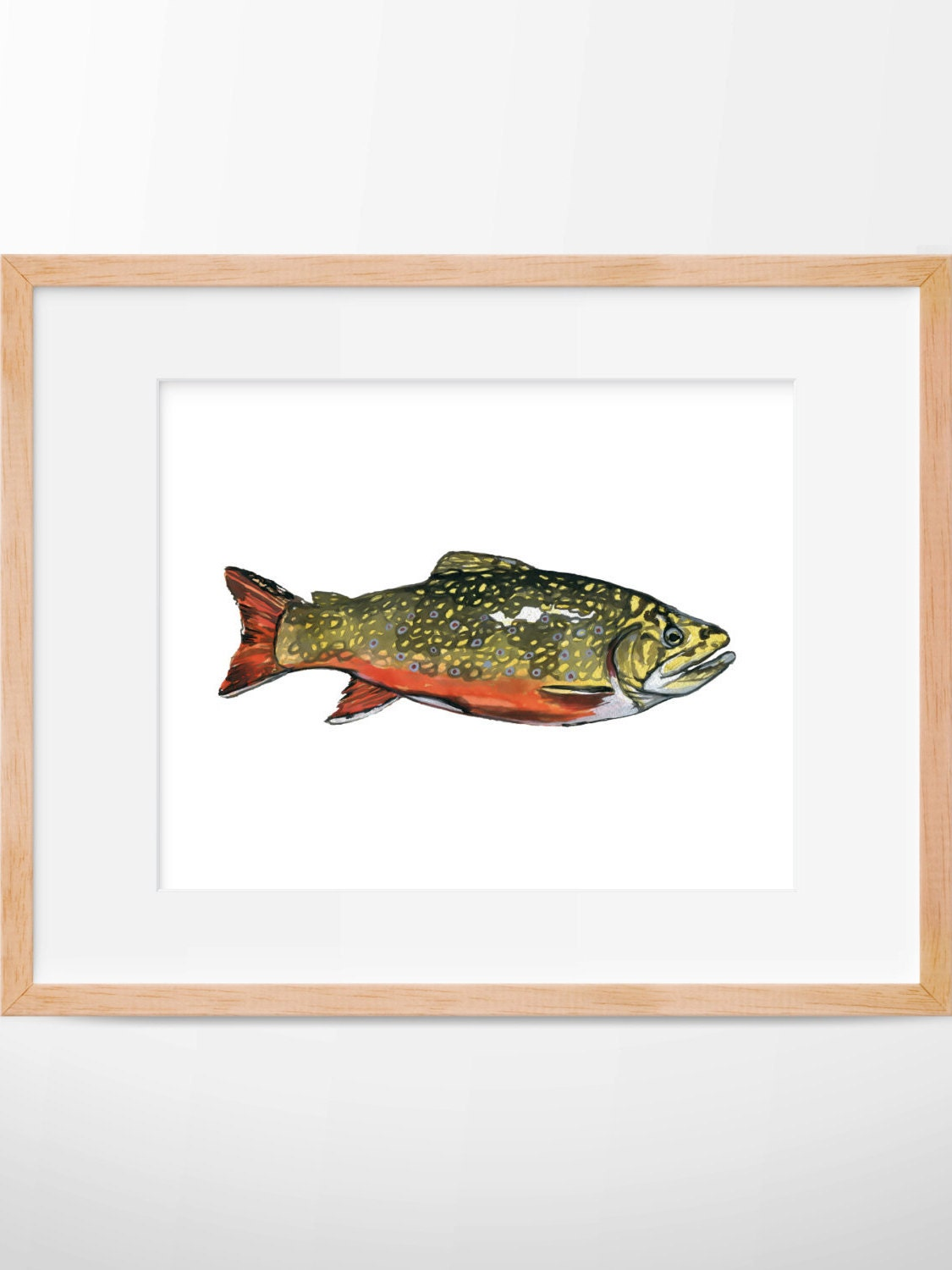 Brook Trout Trout Print Hunting And Fishing Fly Fishing Home Decorators Catalog Best Ideas of Home Decor and Design [homedecoratorscatalog.us]