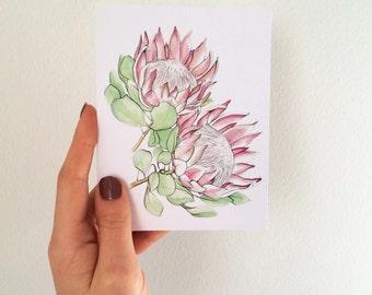 King Protea greeting card - illustration - handmade card - floral - watercolour