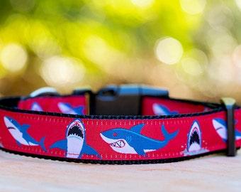 Shark Dog Collar / Dog Collars Australia / XS-XL / Red Dog Collar
