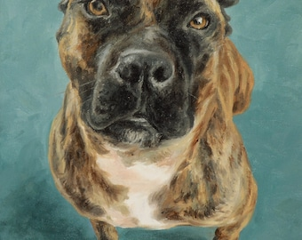 Pet portrait custom dog portrait, Terrier - oil painting on stretched canvas, from your photographs.