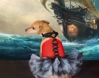 Pirate Dog Costume, pirate dog outfit, Dog pirate tutu, Dog costume, Halloween costume for dogs, Pirate dress, pirate costume, wench dog