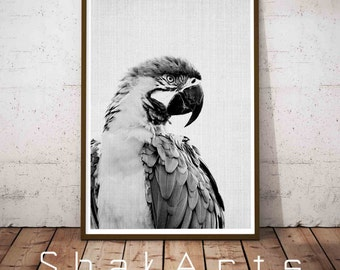 Woodland Decor, Animal Head Wall Art, Parot Photo, Tropical Wall Art, Parrot Wall Art, Tropical Decor, Tropical Print, Animals in Love