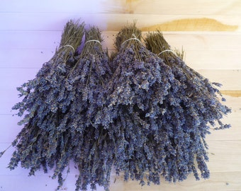 Dried Lavender Flowers, Dried Lavender Bunch 130 stems, Dried lavender, Dry English Lavender, Purple dried decor, Lavender wedding,Preserved