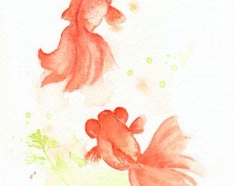 Fish, fish print, art, giclee, watercolor, watercolor painting, watercolor art print, Goldfish----original watercolor print