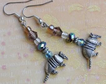 Armadillo earrings. Southwestern earrings. Texas earrings. Possum earrings.