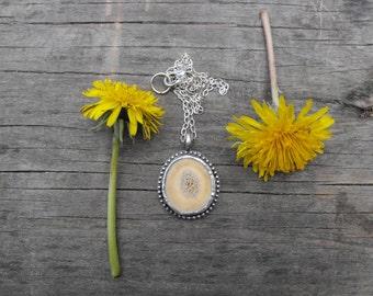 Deer Antler Necklace Natural Deer Antler Pendant Real Antler Necklace Whitetail Deer Necklace