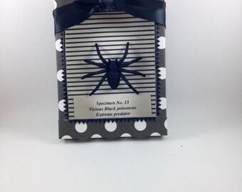 Halloween Spider Specimen Decor