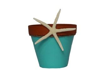 Colorful Indoor Flower Pot