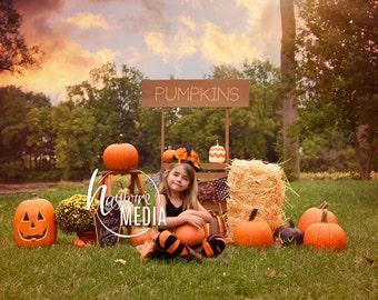 Baby, Toddler, Child, Pumpkin Wooden Stand Booth Digital Backdrop for Halloween or Fall Nature Photo Background - Outside Holiday Idea
