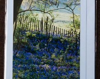 Greetings Card: The Bluebells of Kentland