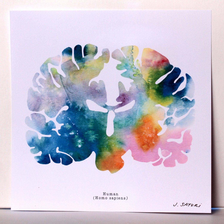The human brain coloring book diamond - Human Brain Watercolor Brain Print 12 X 12 Brain Art Neurology And
